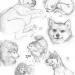 dog sketchdump